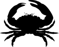 black-crab-md